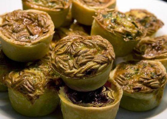 Sâu bột vốn được dùng làm thức ăn cho vật nuôi, nhưng sau đó được cổ xúy chế biến thành các món ăn khác như bánh ngọt hay bánh burger.